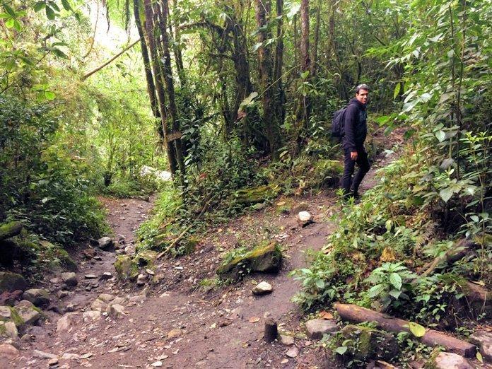 Junction Valle de Cocora hike