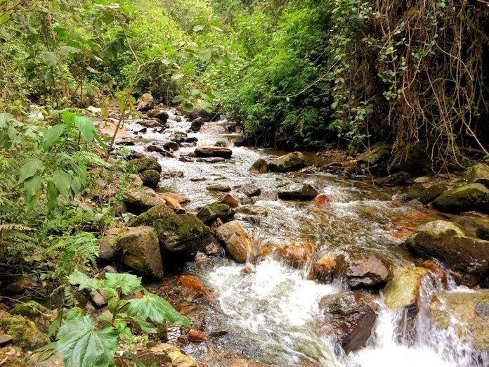 Valle de cocora river